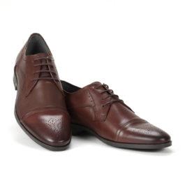 Muške cipele - Elegantna - 746-5 - Braon