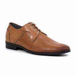 Muške cipele - Elegantne - 914 - Braon